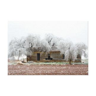 Frozen Trees Canvas Print