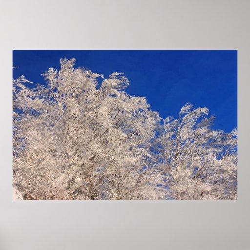 Frozen Trees Green Mountains Poster