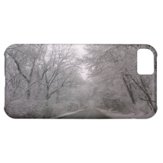 Frozen Trees iPhone 5C Cover