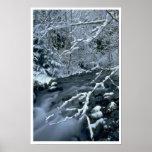 Frozen Trees Print