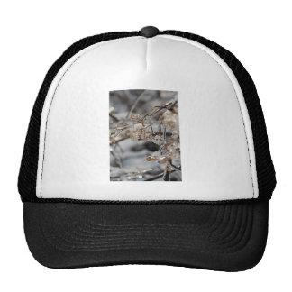Frozen Trucker Hat