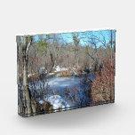Frozen Wetlands Pond Award