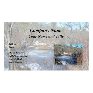 Frozen Wetlands Pond Business Card Templates
