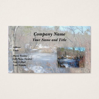 Frozen Wetlands Pond Business Card
