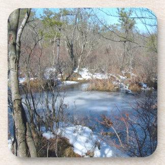 Frozen Wetlands Pond Drink Coaster