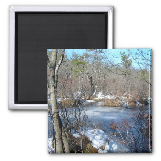 Frozen Wetlands Pond Magnet