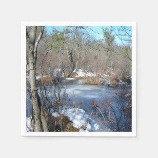 Frozen Wetlands Pond Napkin