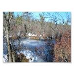 Frozen Wetlands Pond Photo Print