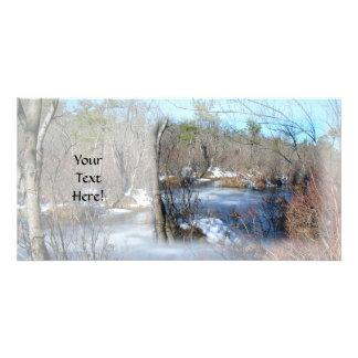 Frozen Wetlands Pond Photo Greeting Card