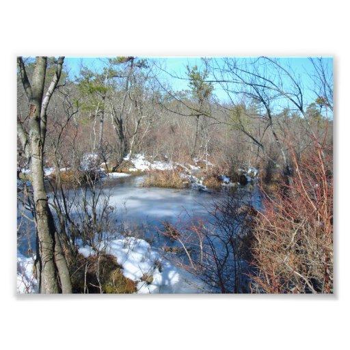 Frozen Wetlands Pond Photo Art