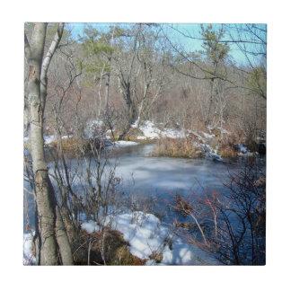 Frozen Wetlands Pond Small Square Tile