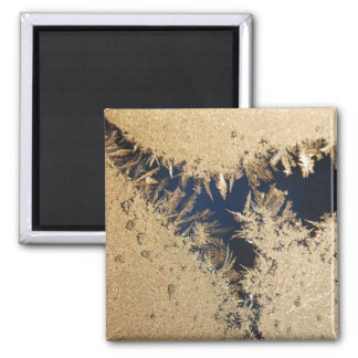 Frozen Window in the Morning 2 Inch Square Magnet