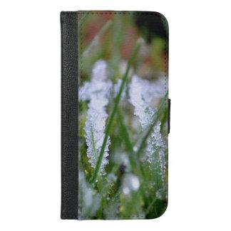 Frozen Winter Grass