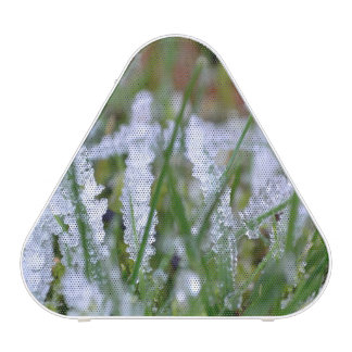 Frozen Winter Grass Bluetooth Speaker