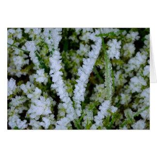 Frozen Winter Grass Card