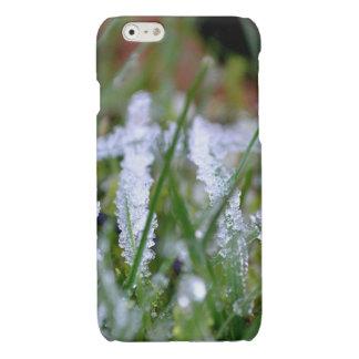 Frozen Winter Grass Glossy iPhone 6 Case