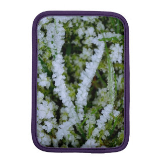 Frozen Winter Grass iPad Mini Sleeve