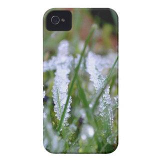 Frozen Winter Grass iPhone 4 Case-Mate Case