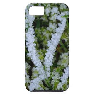 Frozen Winter Grass iPhone 5 Cover