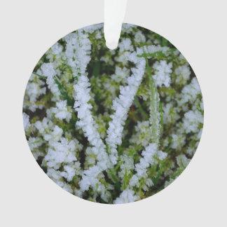 Frozen Winter Grass Ornament