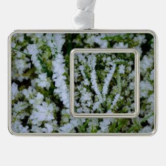 Frozen Winter Grass Silver Plated Framed Ornament