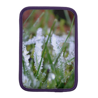 Frozen Winter Grass Sleeve For iPad Mini