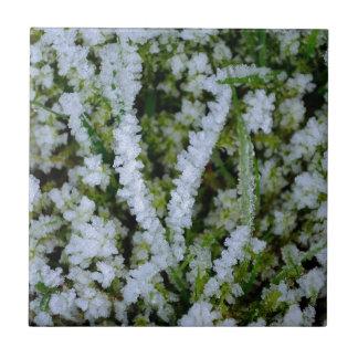 Frozen Winter Grass Ceramic Tile