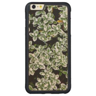 Frozen Winter Plants Carved Maple iPhone 6 Plus Bumper Case