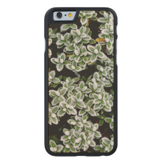 Frozen Winter Plants Carved Maple iPhone 6 Slim Case
