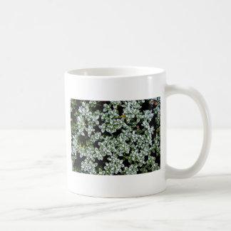 Frozen Winter Plants Mug