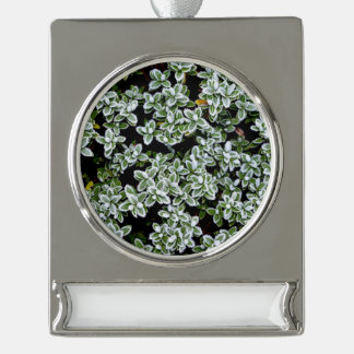 Frozen Winter Plants Silver Plated Banner Ornament
