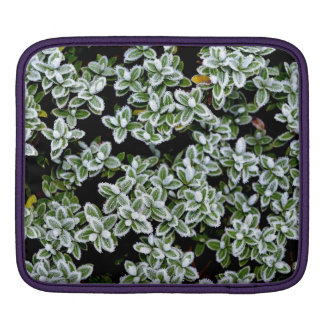 Frozen Winter Plants Sleeve For iPads