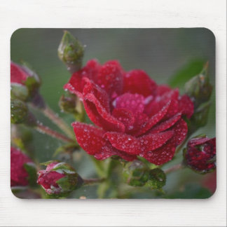 Frozen Winter Rose Mouse Pad
