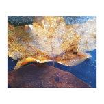 Frozen Yellow Maple Leaf Autumn Nature Canvas Print