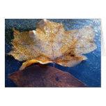 Frozen Yellow Maple Leaf Autumn Nature Card