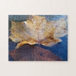 Frozen Yellow Maple Leaf Autumn Nature Jigsaw Puzzle