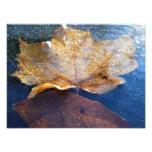 Frozen Yellow Maple Leaf Autumn Nature Photo Print