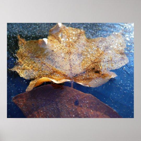 Frozen Yellow Maple Leaf Autumn Nature Poster