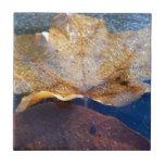 Frozen Yellow Maple Leaf Autumn Nature Tile