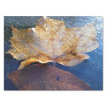 Frozen Yellow Maple Leaf Autumn Nature Tissue Paper