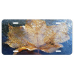 Frozen Yellow Maple Leaf License Plate