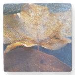 Frozen Yellow Maple Leaf Stone Coaster
