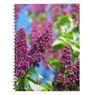 Frühlingsflieder Spiral Notizbuch
