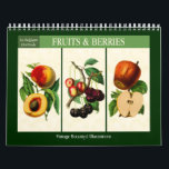 """Fruit and Berries Vintage Botanical 2018 Calendar<br><div class=""""desc"""">Twelve-month wall calendar with vintage illustrations of fruit and berries from La Belgique Horticole,  a botanical magazine published from 1851 to 1865. Digitally cleaned,  enhanced and filtered richly colored antique images. Includes apricots,  apples,  pears,  oranges,  cherries,  peaches,  strawberries,  pineapple,  raspberries,  grapes and pomegranate.</div>"""