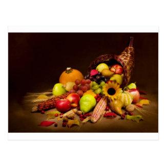 fruit and gourd cornucopia postcard