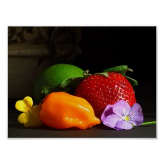Fruit and Vegetable poster print