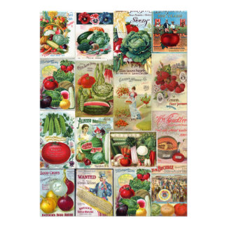 Fruit and Veggies Seed Catalog Collage Custom Announcements