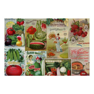 Fruit and Veggies Seed Catalog Collage Poster