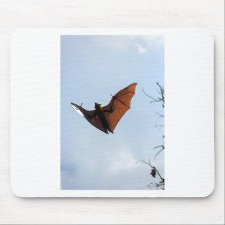Fruit bat (flying fox) mouse pad