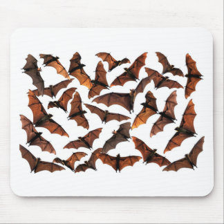 Fruit bats flying fox colony in sky mouse pad